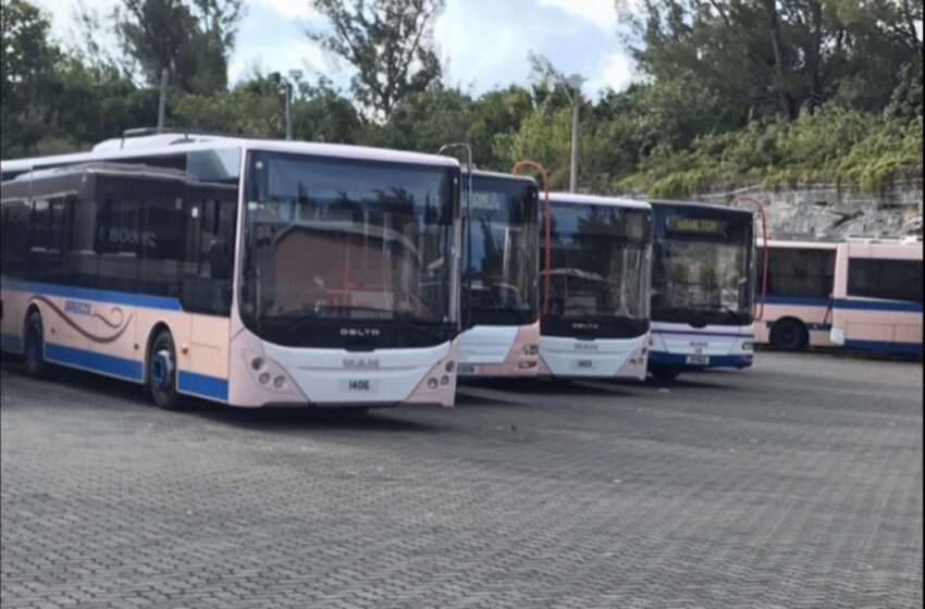 Buses Operating On Sunday Schedule